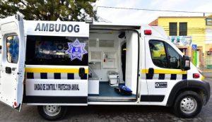 Inuguran ambulancia para perritos en San Luis Potosí