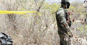 Hallan fosa con  500 cadáveres  en Tamaulipas
