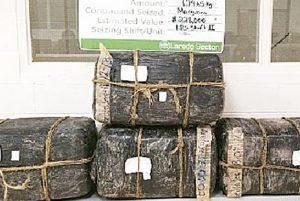Aseguran carga de  285 libras de droga