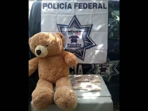 Policía Federal asegura osito de peluche que escondía 200 mil pesos