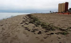 Ahora el mar se aleja en playas de Veracruz, Sonora y Acapulco
