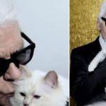 Choupette, la gata heredera de la fortuna de Lagerfeld