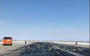 Avión deja caer lingotes y diamantes por accidente (VIDEO)