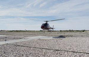 Desde helicóptero cazaban venados; serán juzgados