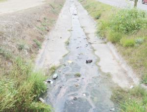 Fluyen aguas negras  en canales pluviales
