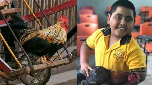 Alumno sorprende a su maestra regalandole un gallo por su cumpleaños