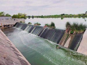 Agua contaminada mata al Laguito