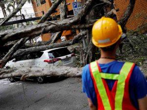 Las aterradoras imágenes del terremoto que sacudió Taiwán