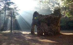 """Familia que dañó la """"Piedra del Elefante"""