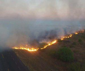 Fuera de control cuatro incendios en Tamaulipas