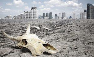 La Tierra entró en la sexta 'extinción masiva'
