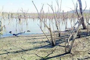 Alertan por sequía; almacenamiento de agua cae al 63%