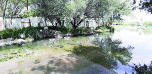 Brota el drenaje en la Colonia Mirador