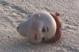 Cangrejo ermitaño usa una cabeza de muñeca como caparazón… y es aterrador