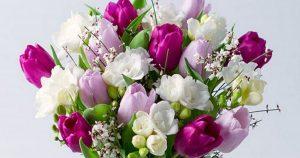 Restringen entrada de flores y follaje a EU