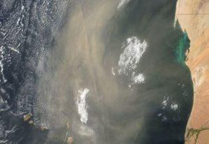 Desmiente PC que humo de CDMX llegue a Tamaulipas