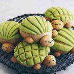 Llegaron las adorables 'Tortuconchas' ¿las probarías?