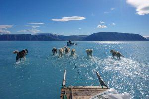 Alerta foto de deshielo en Groenlandia