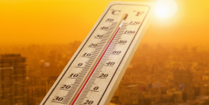 Climas extremos aumentarán en todo el mundo: OMM