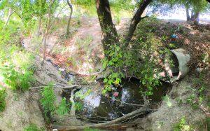 Comapa envenena con descargas al río Bravo