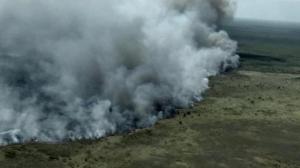 Consume incendio reserva ecológica en Quintana Roo