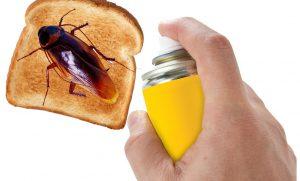 Las cucarachas se están volviendo inmunes a los insecticidas; científicos