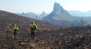 Bolivia y Paraguay unen fuerzas para combatir incendio que ha quemado casi 700 mil hectáreas