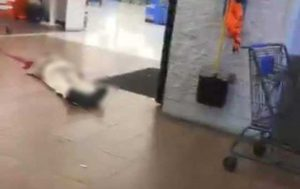 Reportan tiroteo en Walmart del Paso, Texas; 18 heridos