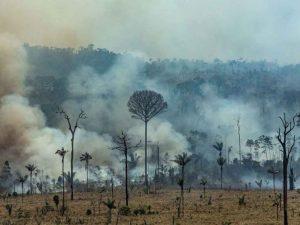 Empiezan a sofocar las llamas en la Amazonia