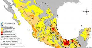 Afecta sequía 36 municipios de Tamaulipas