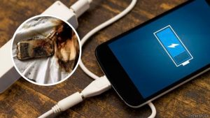 Niño se electrocuta y muere por usar el celular mientras se cargaba
