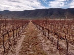 Parras, Coahuila se queda sin agua el resto del año