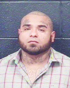 Suma ladrón 33 arrestos