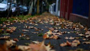 Arranca hoy lunes el otoño
