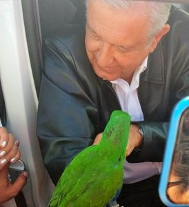 VIDEO: Regalan un perico verde a AMLO en Coahuila