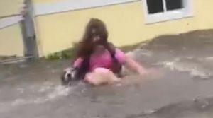 Periodista y su familia rescataron a tres perros de morir ahogados durante  Dorian