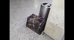 Abandona a perro en central de autobuses porque no le dejaron llevarlo a bordo