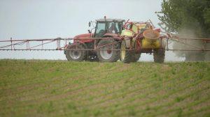 Encuentran pesticidas en la orina de 146 menores