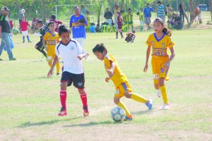 Dominan Alces a Tigres en Escolar