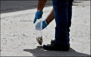 Para evitar especulaciones, FGR investigará operativo en Culiacán: AMLO