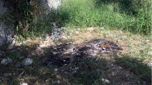 Abuela mata y calcina a su nieto de 8 años en Baja California
