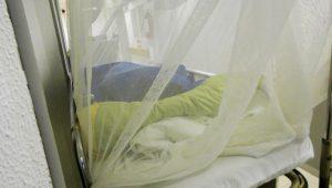 Detectan en España primer caso de dengue por transmisión sexual en el mundo