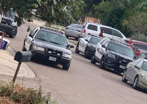 Mata oficial de Policía a perrita de un balazo
