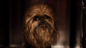 Samsung y Star Wars se unirán a la Fuerza de la Navidad