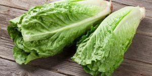 Autoridades de EE.UU piden no comer lechuga romana por un brote de infecciones de E. coli