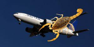 Escorpión pica a una pasajera en pleno vuelo