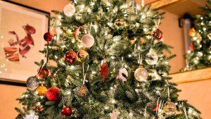 Una familia descubre algo inesperado en su árbol de Navidad