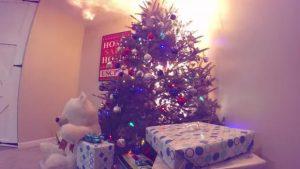 VIDEO: Así de rápido arde un pino de Navidad seco