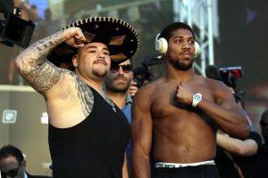 Llegará Ruiz mucho más pesado que Joshua