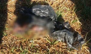 Sufre aborto espontáneo y abandona producto cerca del río Bravo
